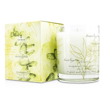 Thymes Aromatic Candle - Eucalyptus