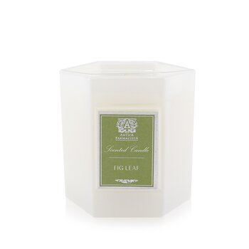 Antica Farmacista Candle - Fig Leaf