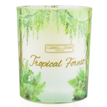 The Candle Company (Carroll & Chan) 100% Beeswax Votive Candle - Tropical Forest